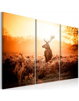 Schilderij - Deer in the Sun I