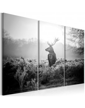 Schilderij - Black and White Deer I