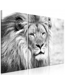 Schilderij - The King of Beasts (3 Parts) Black and White
