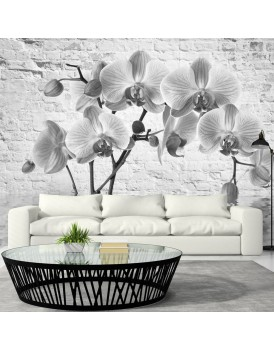 Fotobehang - Orchid in Shades of Gray