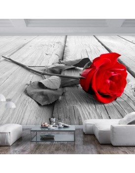 Fotobehang - Abandoned Rose