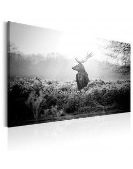 Schilderij - Black and White Deer