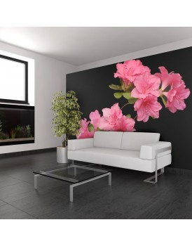 Fotobehang - Azalea in Black