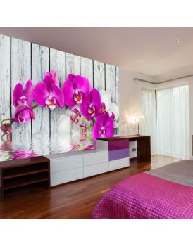 Fotobehang - Violet orchids with water reflexion