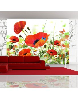 Fotobehang - Country poppies
