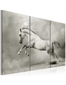 Schilderij - A white horse in motion