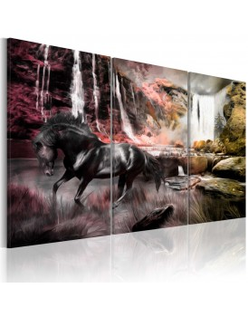 Schilderij - Black horse by a waterfall