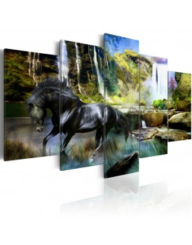 Schilderij - Black horse on the background of paradise waterfall