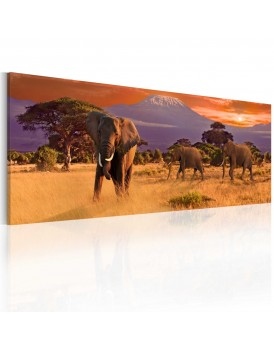 Schilderij - March of african elephants