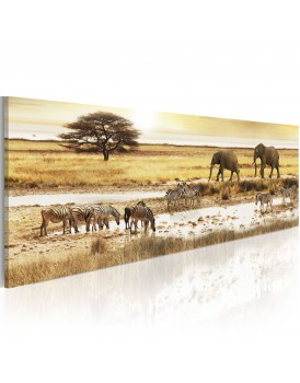 Schilderij - Africa: at the waterhole