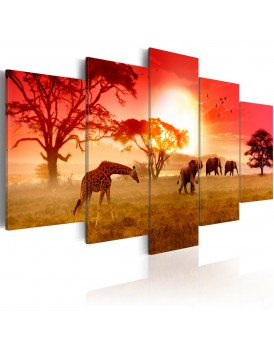 Schilderij - Sunny colours of Africa