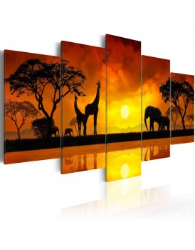 Schilderij - Savanna - sunset