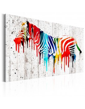 Schilderij - Colourful Zebra
