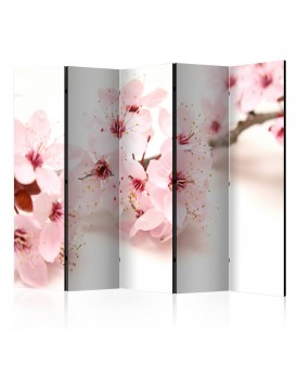 Vouwscherm -  Cherry Blossom II [Room Dividers]